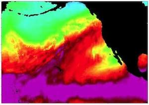 Pattern Detection in Climate Data