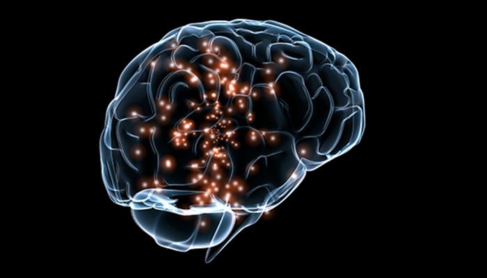 BrainFormat: A Data Standardization Framework for Neuroscience Data